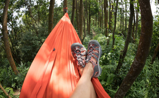 Woman hiker relaxing in hammock in rainforest stock photo