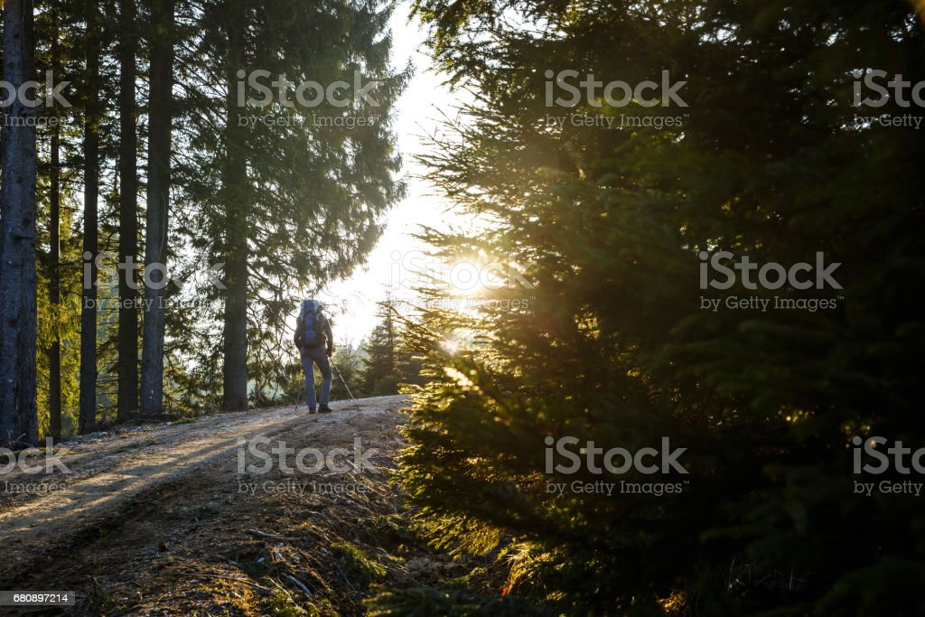 Woman hiker resting on a mountain road, sun shining royalty-free stock photo