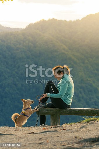 Woman hiker sitting on bench and playing with small dog on top of the hill. Hiking, pets, animal friends and dog obedience training concepts.