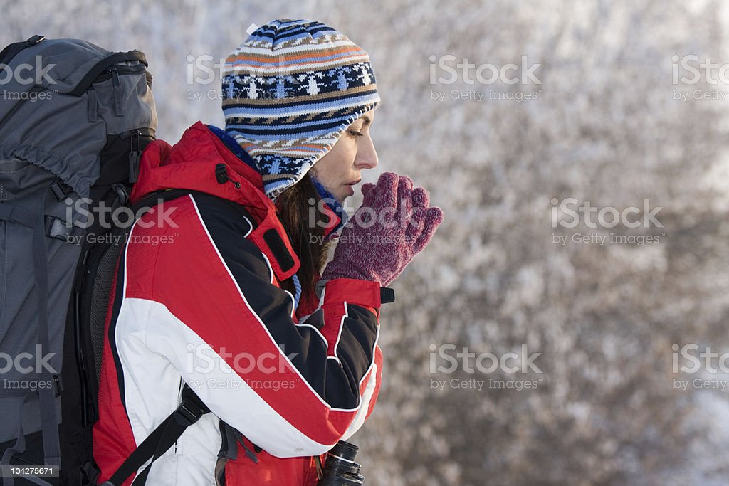 Woman hiker trekking in the snow with a backpack royalty-free stock photo