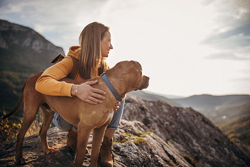 One woman, female hiker and her dog on mountain peak on a sunny day.