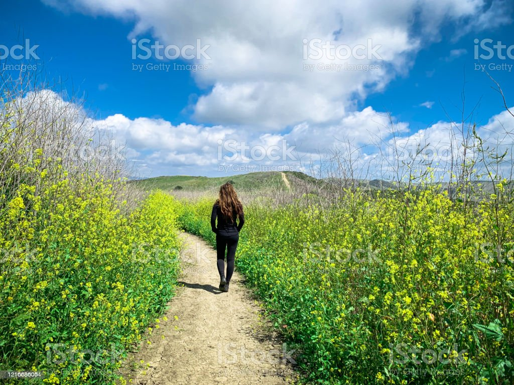 Woman hiking along trail with flowers in southern California - Royalty-free Active Lifestyle Stock Photo