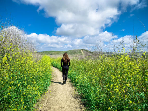 Woman hiking along trail with flowers in southern California stock photo