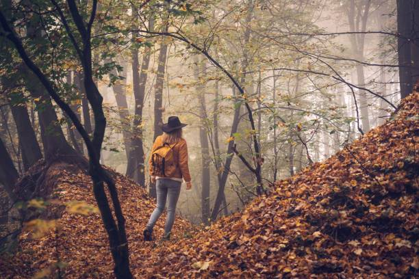 Woman hiking in autumn forest stock photo