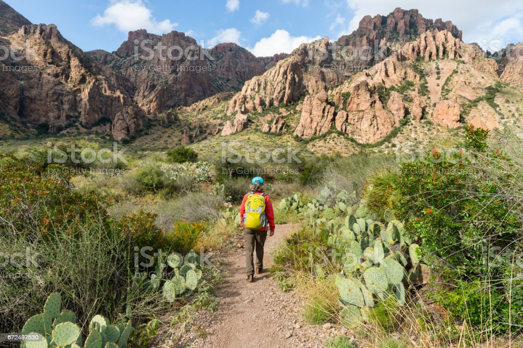 Woman hiking in Big Bend National Park, Texas, USA stock photo