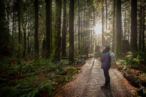 istock Woman Hiking in Forest During Rainfall, Sunlight Streams in Background 1084413022