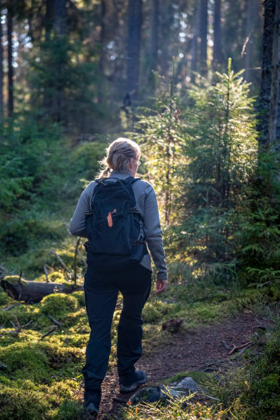 Woman hiking in forest stock photo