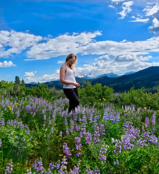 Woman hiking in meadows in bloom. Banff Natianal Park. Alberta. Calgary. Canada. stock photo