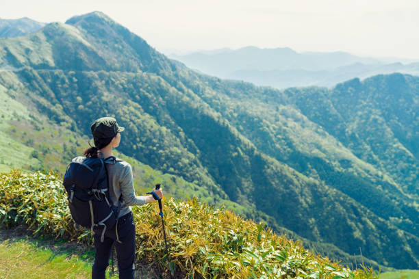 woman hiking in mountain,japan - forest bathing foto e immagini stock