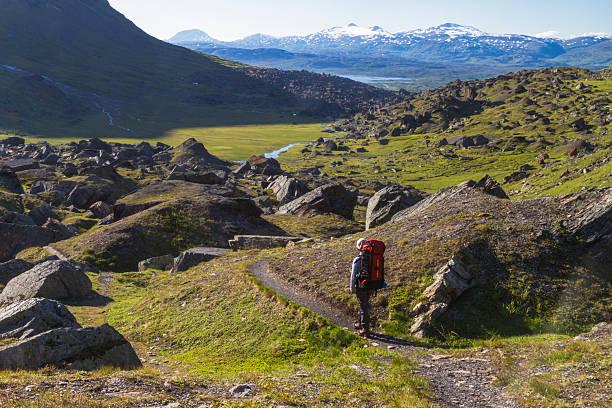 woman hiking in mountains area in sweden - norrbotten bildbanksfoton och bilder