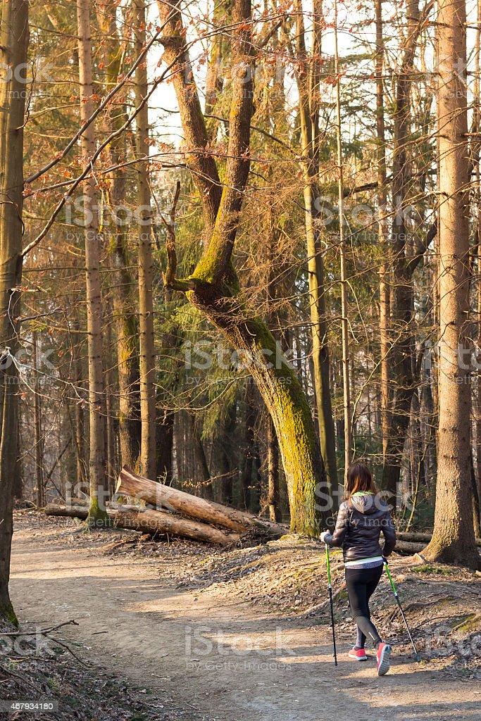 Frau Wandern in der Natur. Lizenzfreies stock-foto
