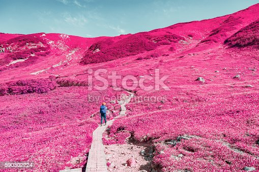 Okudainichidake is, mountain in Toyama, Toyama Prefecture. In the Dainichi ridge that is derived from Hida Tateyama mountain range. Altitude 2,611m.