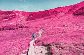 Woman hiking in Okudainichidake,Japan