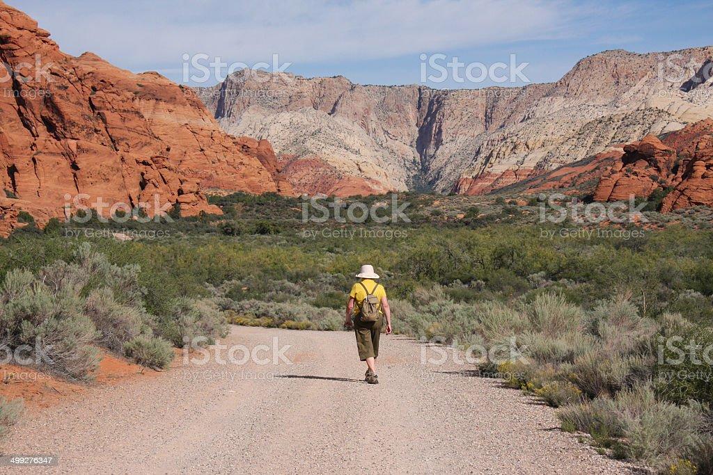Woman Hiking in Snow Canyon, Utah stock photo