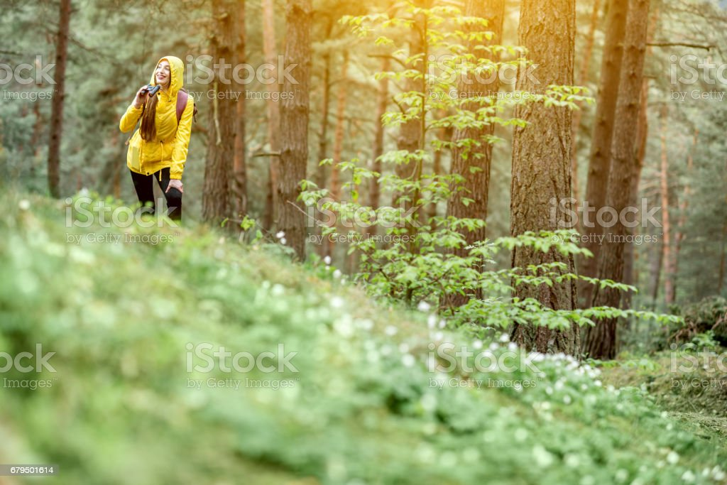 Woman hiking in the forest stock photo