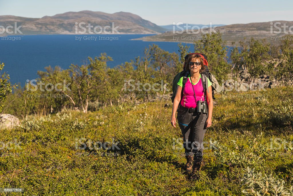 Woman hiking, Kiruna, Sweden stock photo