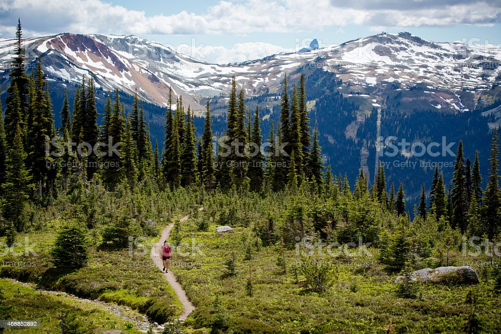 Woman hiking through trail with mountain in the background stock photo