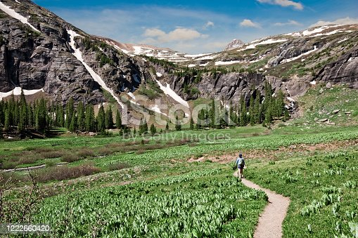 The San Juans in southern Colorado are a high altitude range of mountains that straddle the Continental Divide.  This wide-open landscape, at an elevation of 11,400 feet above sea level, is well above timberline.  This woman hiker was photographed crossing a meadow at Lower Ice Lake Basin in the San Juan National Forest near Silverton, Colorado, USA.