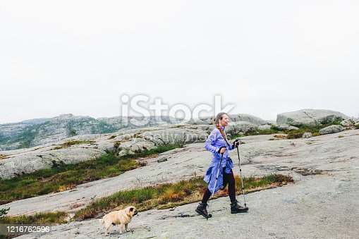 Young happy smiling woman in blue shirt and with trekking poles have a great time with her small dog - pug breed getting to the top of Preikestolen mountain in South Norway during bright summer day