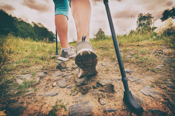 Woman hiking with sticks Woman hiking with sticks outdoor Active and healthy lifestyle concept. nordic walking stock pictures, royalty-free photos & images