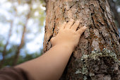 istock Woman hold the tree 1188406538