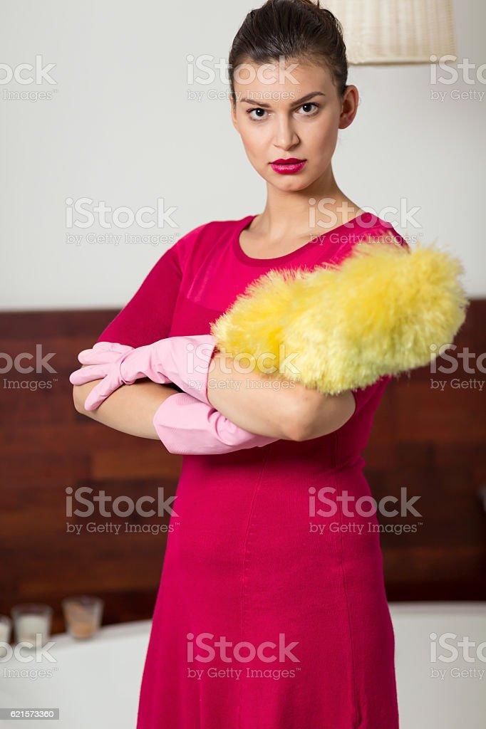 Woman holding a dust brush photo libre de droits