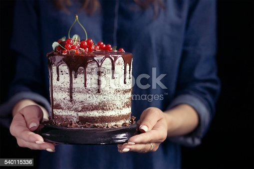 istock Woman holding a fruit cake 540115336
