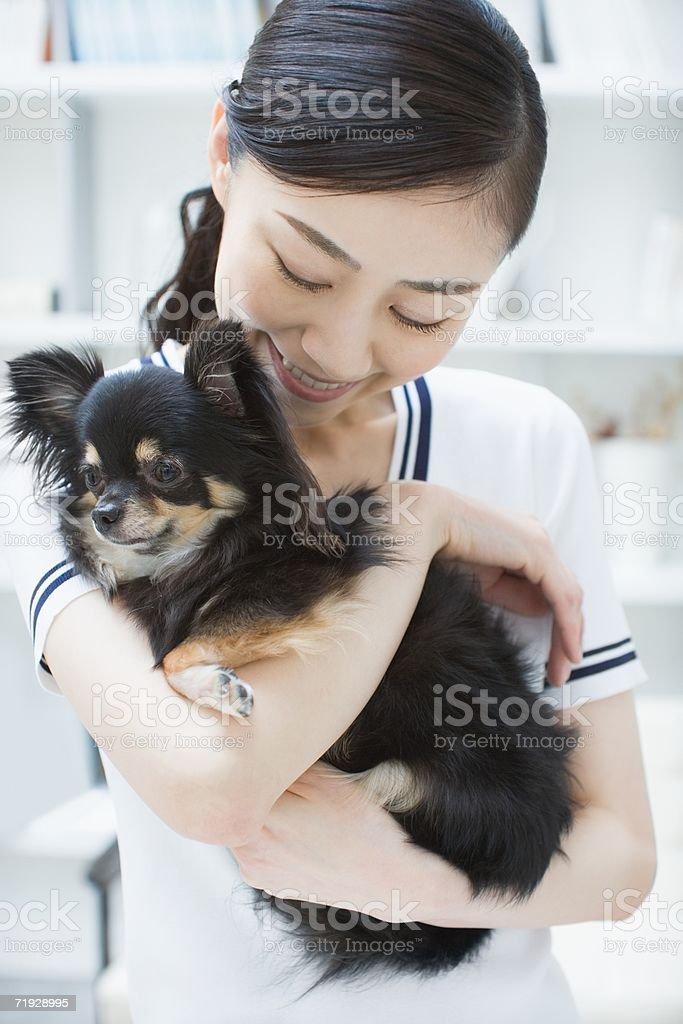 Mujer agarrando una mascota chihuahua foto de stock libre de derechos