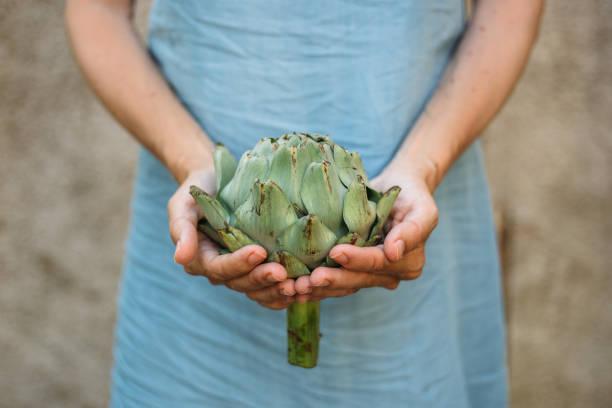 frau hält eine artischocke - artischocken gesund stock-fotos und bilder