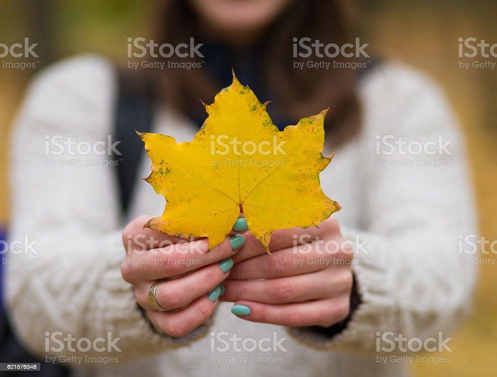 Femme tenant des feuilles d'automne photo libre de droits