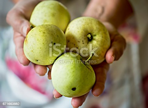 878725126 istock photo Woman holding apples in hands 671663882