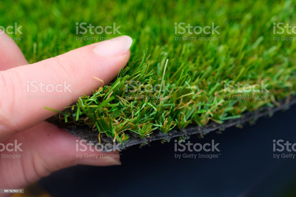 Woman holding Artificial grass  in her hand stock photo
