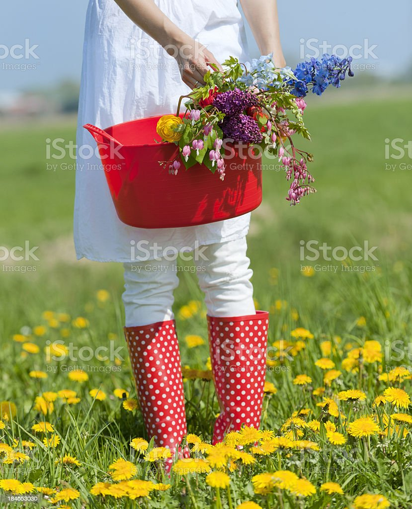 woman holding basket with flowers royalty-free stock photo