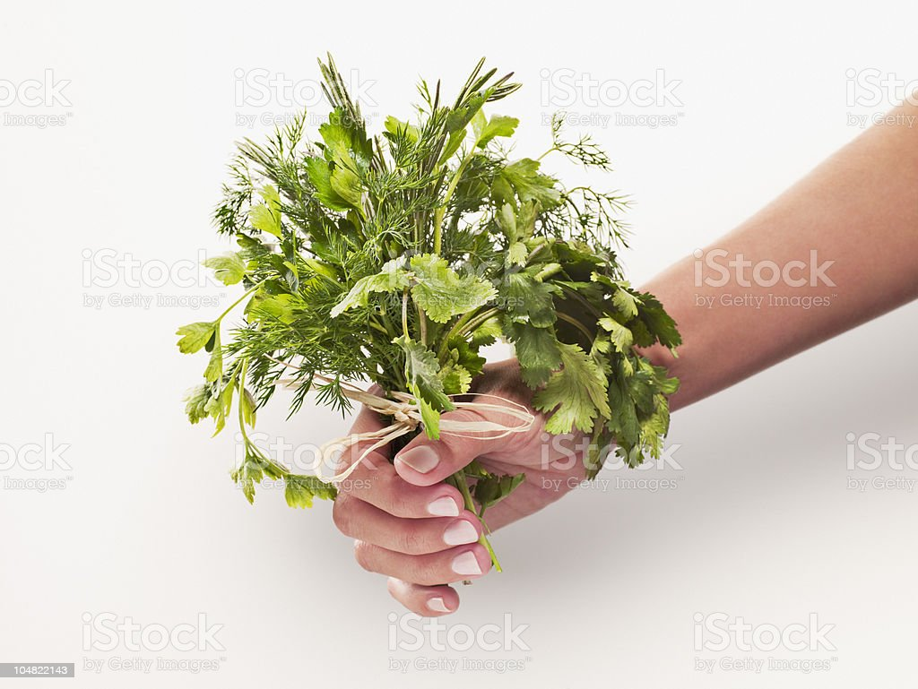 Woman holding bunch of herbs royalty-free stock photo