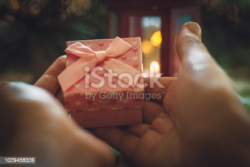 istock woman holding Christmas present 1029458326
