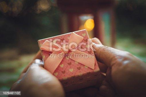 istock woman holding Christmas present 1029461102