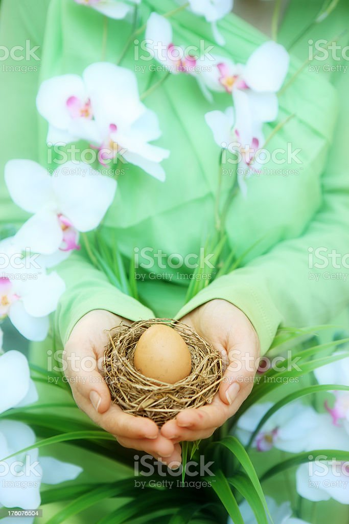 Woman holding Egg in nest royalty-free stock photo