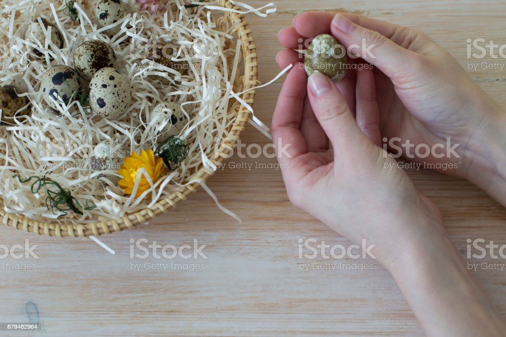 Woman holding egg royalty-free stock photo