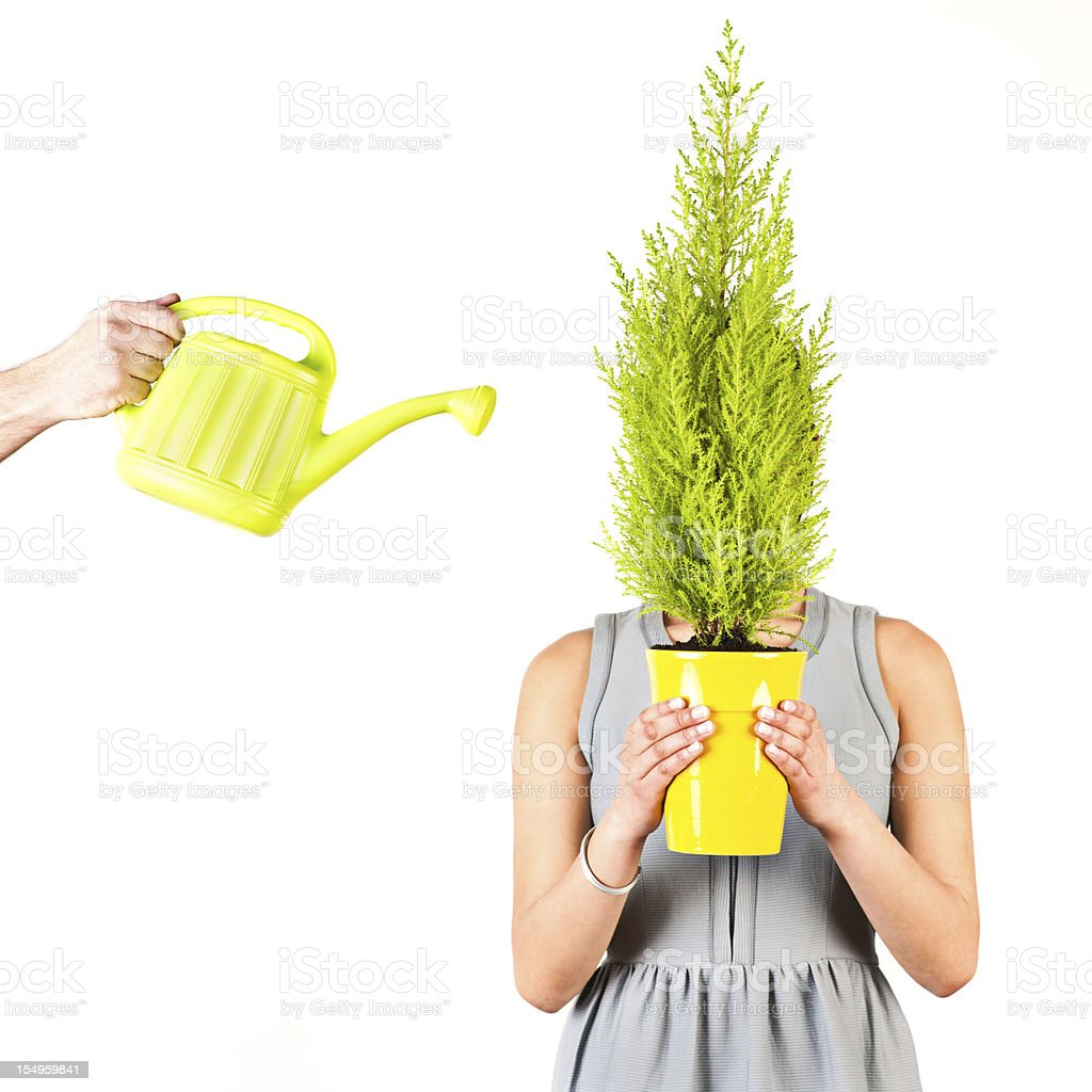 Woman holding flowerpot royalty-free stock photo