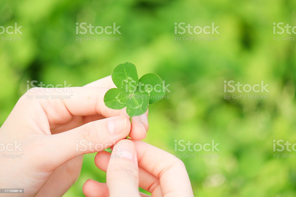 Woman holding four-leaf clover in her fingers stock photo