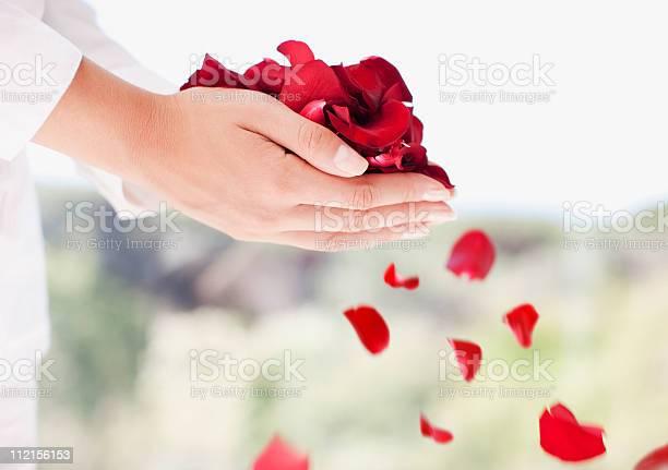 Woman holding handful of flower petals picture id112156153?b=1&k=6&m=112156153&s=612x612&h=kbusw7caqg8b xyif k4wyubsrfznylnweidplpsx6i=