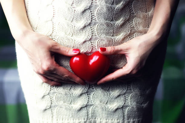 Woman holding heart female hand holding a heart shape closeup female private parts stock pictures, royalty-free photos & images