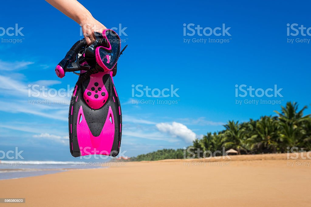 Woman holding mask and flippers for swimming royalty-free stock photo