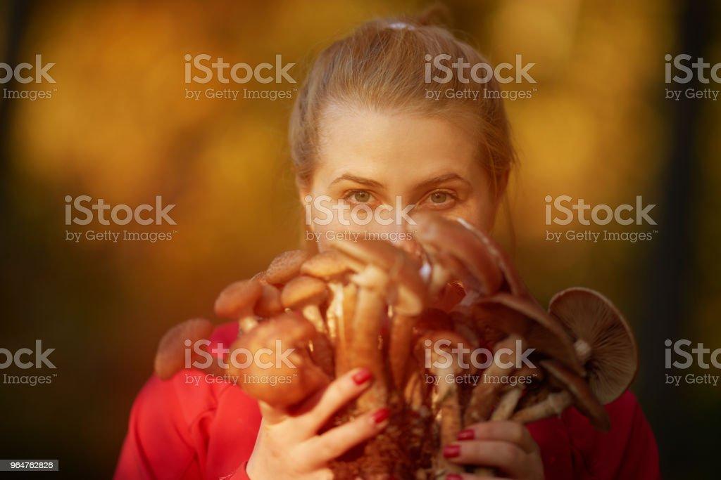woman holding mushrooms royalty-free stock photo