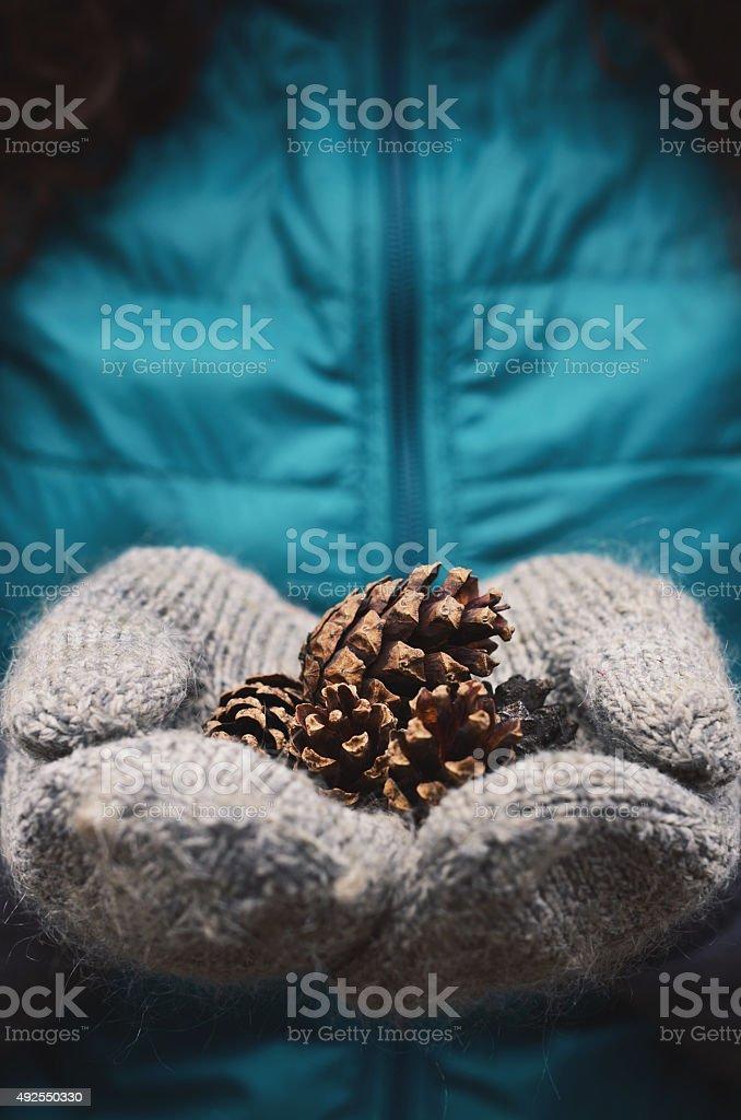 Woman holding pine tree cones in grey woolen mittens