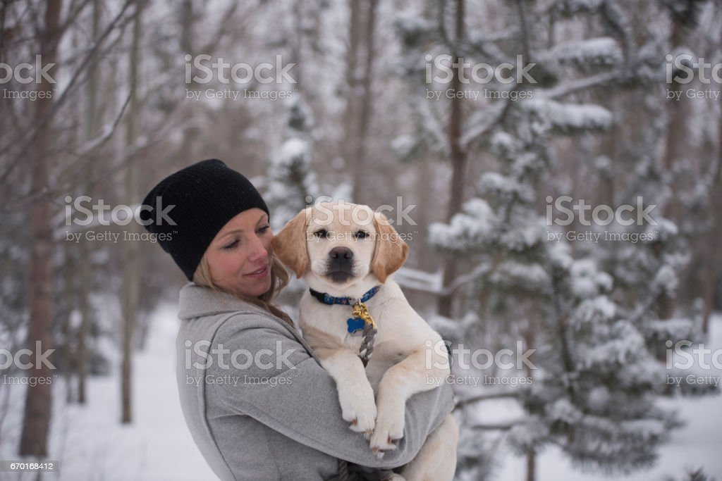 woman holding puppy who is looking at the camera with a collar and tags stock photo