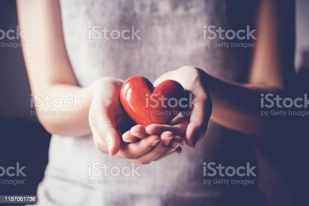 Woman Holding Red Heart Health Insurance Donation Charity Concept - Fotografias de stock e mais imagens de Adulto