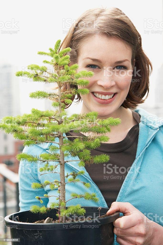 Woman holding seedling stock photo