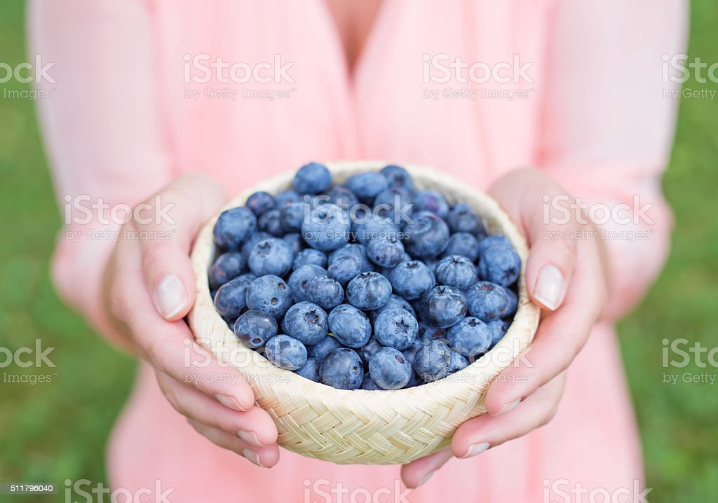 Woman holding small pot of blueberries stock photo