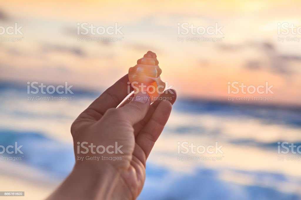 Woman Holding Small Shell in Her Hand at the Tropical Beach at Sunrise time stock photo
